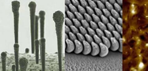 Materials Science and Engineering, Rensselaer